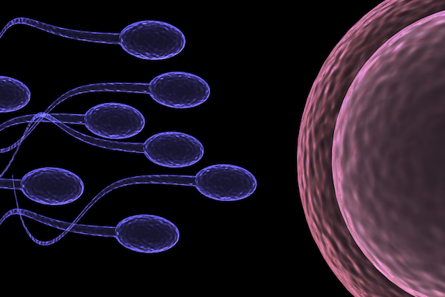 Men with low sperm counts at increased risk of illness, study suggests